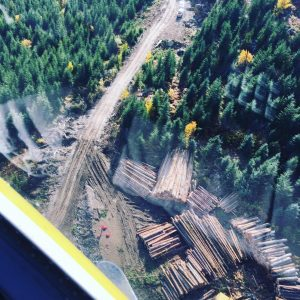 BC logging view from helicopter