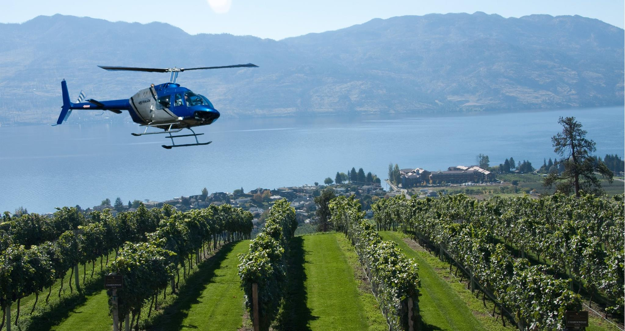 Valhalla helicopter hovers over Naramata Vineyard