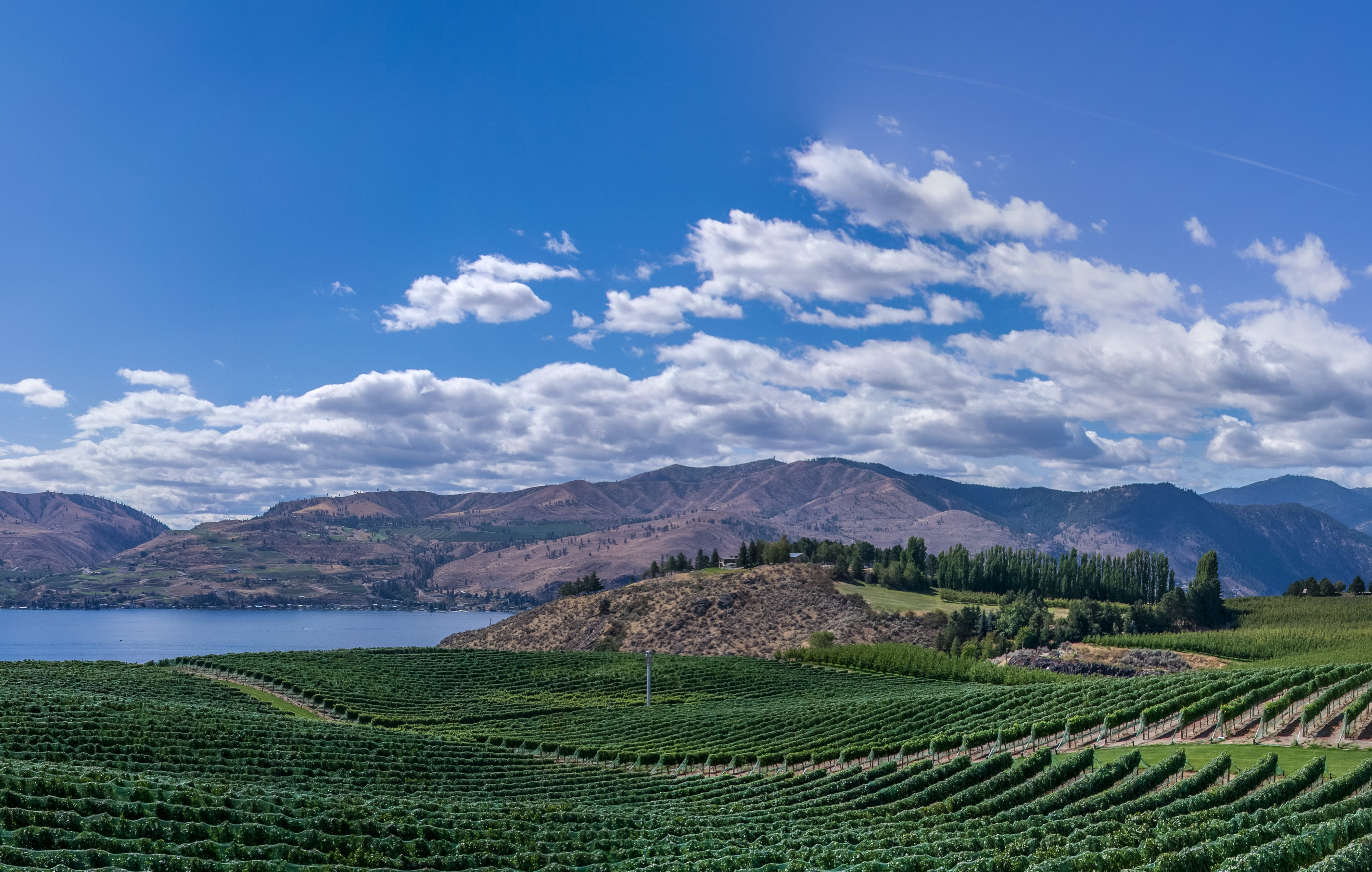 Valhalla Helicopter Wine Tours Okanagan